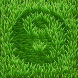 Symbool ying-Yang op groen gras Royalty-vrije Stock Foto