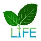 Symboolblad aan het embleem van het het levenswater royalty-vrije illustratie