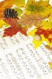 symfonia jesienią Zdjęcia Royalty Free