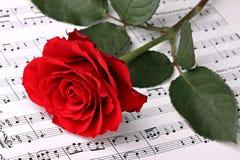 Symfonie van liefde 2 Stock Fotografie
