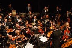 Symfoniorkester Royaltyfri Bild