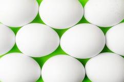 Symmetri av vita ägg på ljust ljus - grön bakgrund Arkivbilder