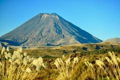 Symmetrialkegel van een vulkaanmt Ngauruhoe bij het Nationale Park van Tongariro, Nieuw Zeeland Een deel van de Vreedzame Ring va stock afbeeldingen
