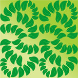 Symmetric background of green petals Stock Images