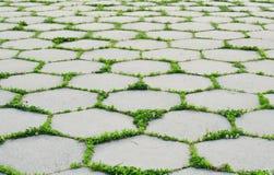 Symmetric concrete brick path Royalty Free Stock Photos
