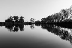 A symmetric photo of Trasimeno lake in Tuoro, with trees and empty sky perfectly reflecting on water royalty free stock photo