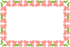 Symmetric pink and green floral frame Royalty Free Stock Photography