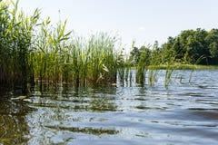 Symmetric reflections on calm lake Stock Image