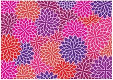 Symmetrical dahlia flowers illustration Stock Photos