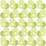 Symmetrical floral seamless texture, green, light green flowers, circles Royalty Free Stock Images