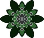 Symmetrical flower clear shape. Flower  set, flowers icon for decorative and beauty design Stock Photography