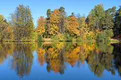Symmetrical landscape with trees reflecting in a lake in autumn Royalty Free Stock Photography