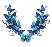 Symmetrical pattern of butterflies morpho Royalty Free Stock Photography