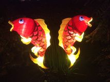 Symmetrical Red Coi Fish Lantern Royalty Free Stock Images
