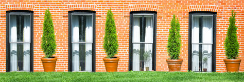 Symmetrical Windows and Plants Stock Photos