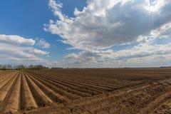 Symmetrically αυλακωμένο καλλιεργήσιμο έδαφος με το μπλε ουρανό και τα σύννεφα Στοκ Εικόνες