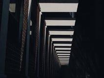 symmetrier Arkivbilder