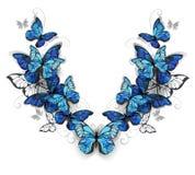 Symmetrisch patroon van vlindersmorpho stock illustratie