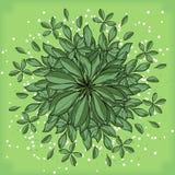 Symmetrische geometrische Kreismusterzusammensetzung von Anlagen Lizenzfreies Stockfoto
