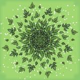 Symmetrische geometrische Kreismusterzusammensetzung von Anlagen Lizenzfreie Stockbilder
