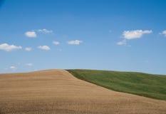 Symmetrische Landschaft in Toskana Stockbild