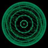 Symmetrisches Bakterienwachstum Stockfoto