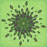 Symmetrisk geometrisk rund modellsammansättning av växter Royaltyfri Fotografi