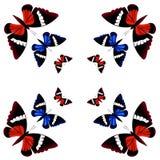symmetrisk modell Fjärilar på gul bakgrund Arkivfoton