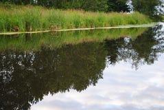 symmetriskt livligt för reflexion Royaltyfria Foton