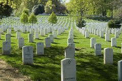Symmetry in Arlington. Symmetrical view of tombstones in Arlington Cemetery, Virginia, names removed Royalty Free Stock Photography