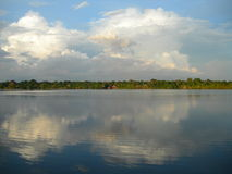 Symmetry forest skyline on the Amazon river. Forest skyline on the Amazon river, mirrored in water royalty free stock image