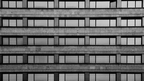 Symmetry of lines and windows. Shot and black and white, detail on the sculpture on the facade of this historic building representing some plants / flowers / Stock Photography