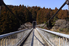 Symmetry suspension bridge perspective in natural forest Stock Photos