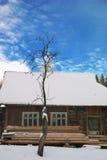 Symmetry tree house. Carpathia Ukraine Stock Images