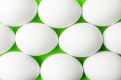 Symmetry of white eggs on bright light green background. Abstraction Stock Images