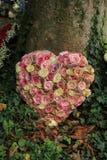 Sympathieblumen nahe einem Baum Lizenzfreies Stockbild