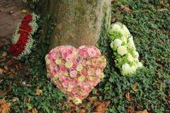 Sympathieblumen nahe einem Baum Stockfoto