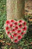 Sympathy flowers near a tree stock photos