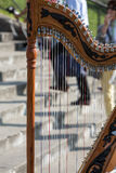 A symphony musical instrument called harp details Stock Images