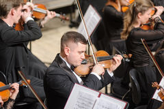 Symphony orchestra on stage. Violin group plays Royalty Free Stock Photos