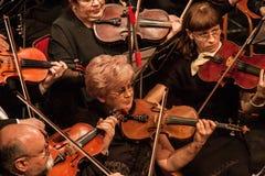 Symphony Orchestra Stock Photography
