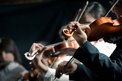 Symphony orchestra violinists performing Royalty Free Stock Photography