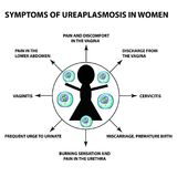Symptoms of ureaplasmosis in women. The structure of ureaplasma. Infographics. Vector illustration on background. stock illustration