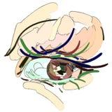 Syna Makeup Konststilen, borsteslaglängder vektor illustrationer
