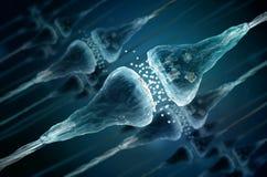 Synaps en Neuronencellen Royalty-vrije Stock Fotografie