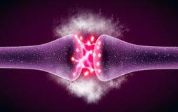 Synapse är en struktur som tillåter en neuron- eller nervcell att passera en elektrisk eller kemisk signal till en annan neuron e vektor illustrationer