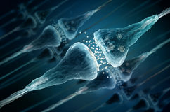 Synapse and Neuron cells. Sending electrical chemical signals Royalty Free Stock Photography