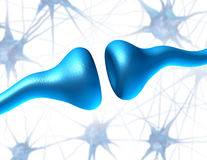 Synapse and Neuron Receptors Royalty Free Stock Images