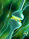 Synapses. Activated chemical synapses in human brain. Digital illustration Royalty Free Stock Photography