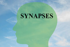 Synapses - brain concept Royalty Free Stock Image